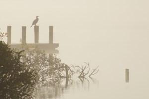 Windermere in mist