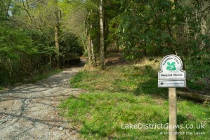 Jenkin's Crag sign