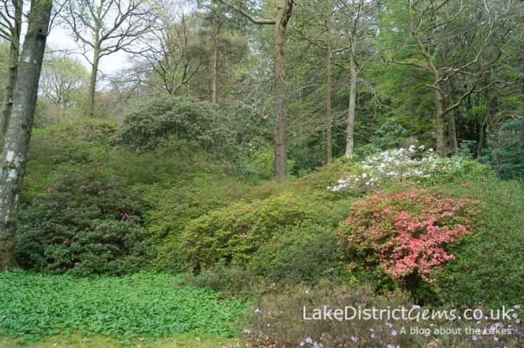 Stagshaw Gardens