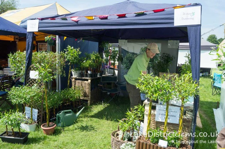 Willow for Wellbeing, Holker Garden Festival 2016