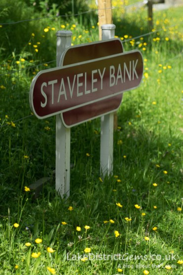 Staveley Bank sign