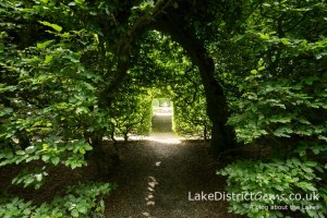 Beech archway at Levens Hall