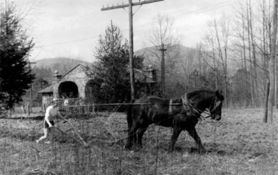 s_girl_plowing_with_horse