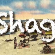 ShagLessons2