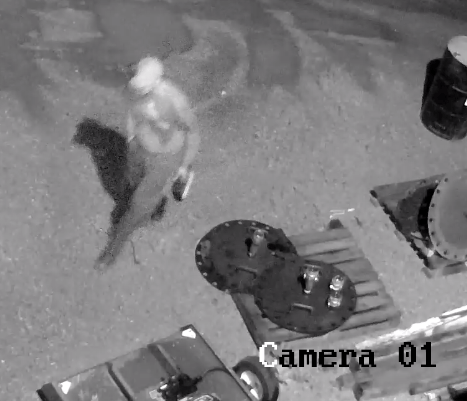 Male Suspect Picture 1