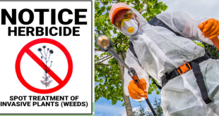City of Cold Lake applying to control noxious weeds