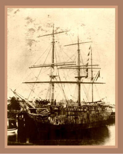 Image result for the white lion ship