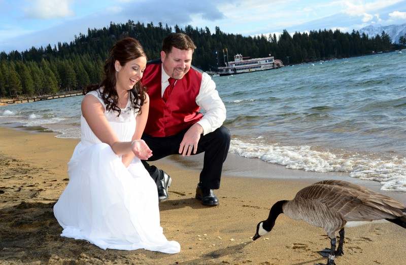 Zephyr Cove Wedding April 2014
