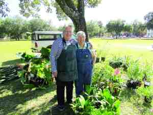 Donna Messenger and Susan Maesen were at the City of San Antonio Park bright and early on Feb. 1 to help sell plants at a community benefit for Diane and Lewis Riggleman. (B.C. Manion/Staff Photo)