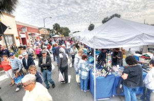 Thousands flocked to Dade City to enjoy the activities and displays at the 2016 Kumquat Festival. Events hoping to secure support through Pasco County's tourism grants have until April 13 to apply. (File Photo)