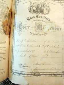 Family Bibles often contain hidden gems, notes Andy Smith. In this Bible dating to the 1870s, there's a flower that pressed between its pages, at the marriage page