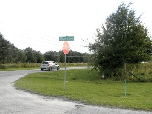 A car passes along Old State Road 54, at Old Cypress Creek Road. The route is a popular cut-through to avoid traffic at State Road 56. (File Photo)