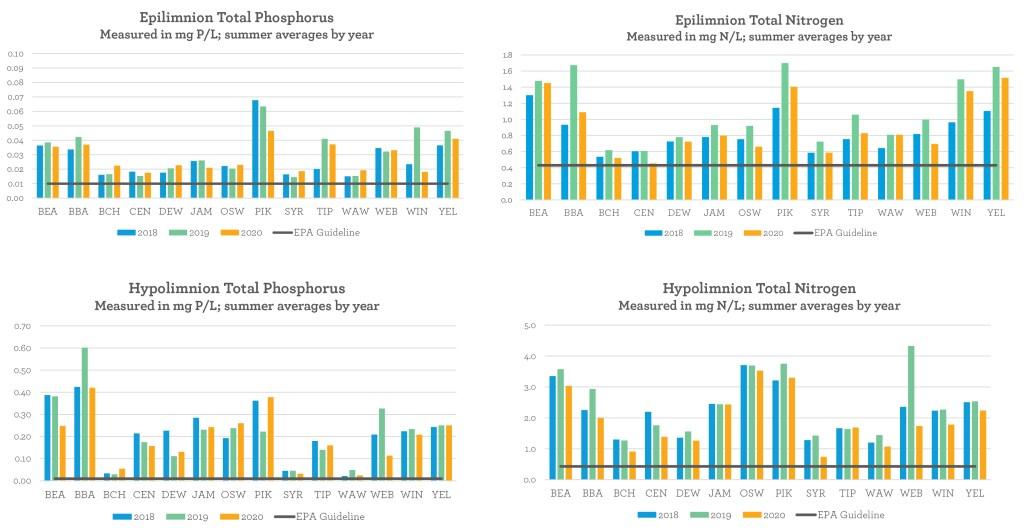 phosphorus and nitrogen, beneath the surface 2020