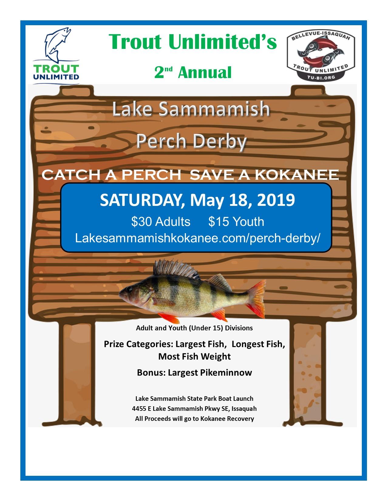 Perch Derby Lake Sammamish Kokanee