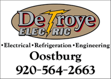 Detroye-Electric-logo