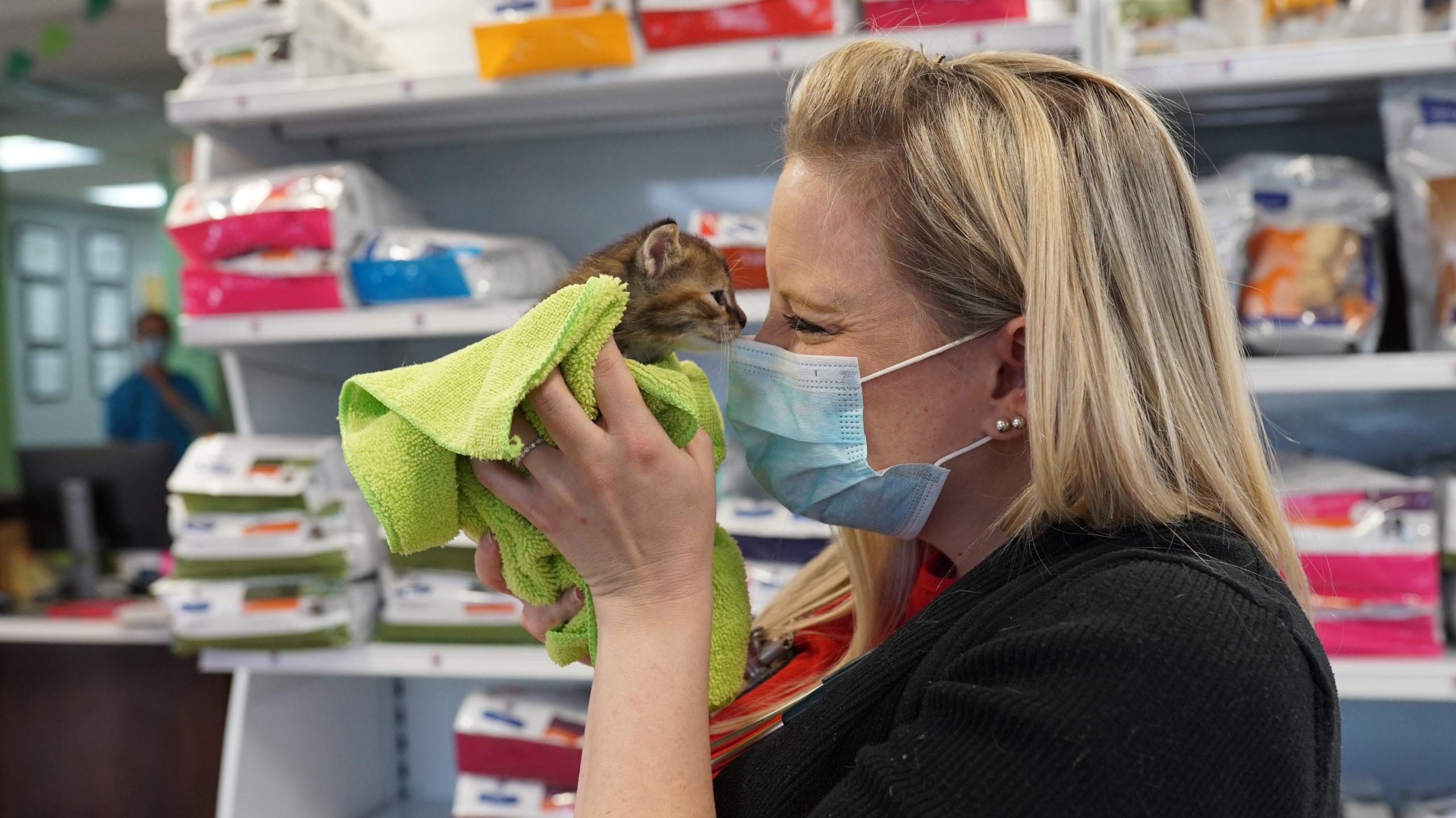 Dr. Frione holding kitten