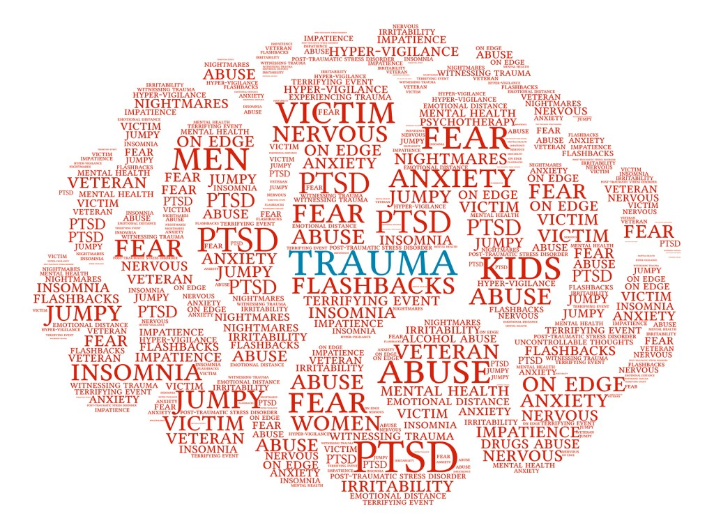 Trauma Brain word cloud on a white background.