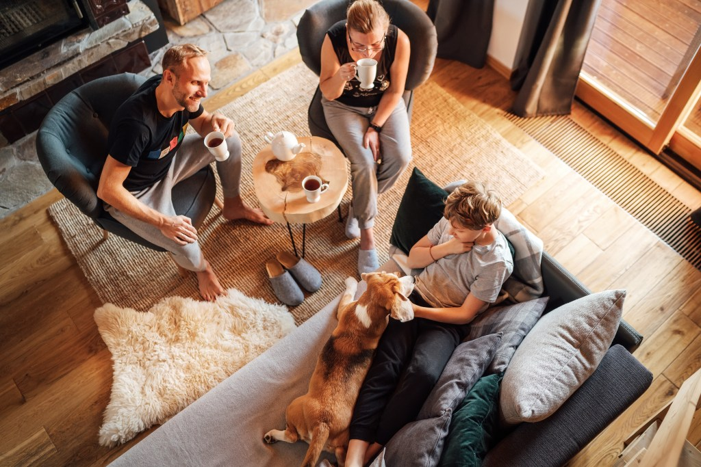Cozy family time. Father, mother and son  at the home living room. Boy lying in comfortable sofa and  stroking their beagle dog and smiling. Peaceful family moments concept image.