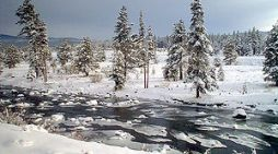 Bureau of Reclamation Selects Three Projects in Truckee River and Carson River Basins to Receive $179,872 for WaterSMART Small-Scale Water Efficiency Projects