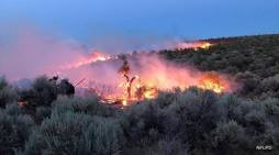 NLTFPD Sent Resources to Help with 285 Acre Jacks Valley Fire