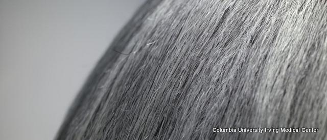 University Study Says It's True: Stress Does Turn Hair Gray (And It's Reversible)