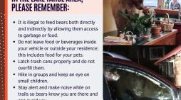 After Four Home Break-Ins Last Week Alone Placer Sheriff's Office Reminds You to be Bear Safe!