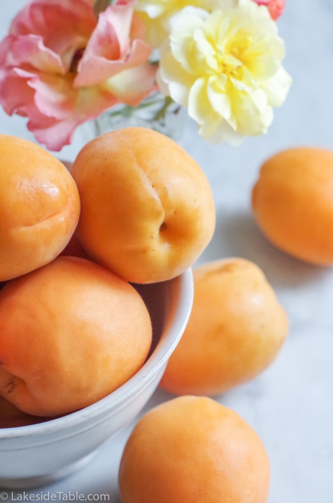 bowl of whole apricots