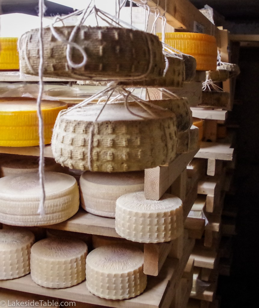 Marcoot Creamery white wheels of cheese in a shadowed cheese cave