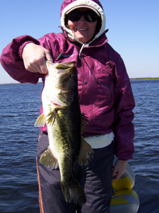 Lake Toho Bass Fishing March 7th 2010