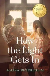 How the Light Gets In by Jolina Petershein