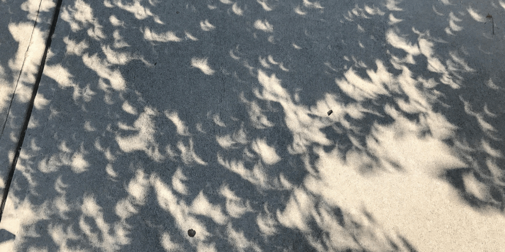 Lakota East Spark Online Eclipse Story Jessica Jones