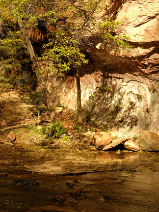 shadow rock reflections