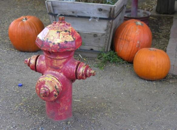 fire hydrant traffic cop