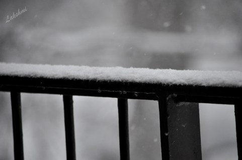 Snow on our handrail