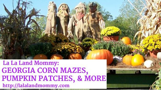 Corn Mazes, Pumpkin Patches, & More