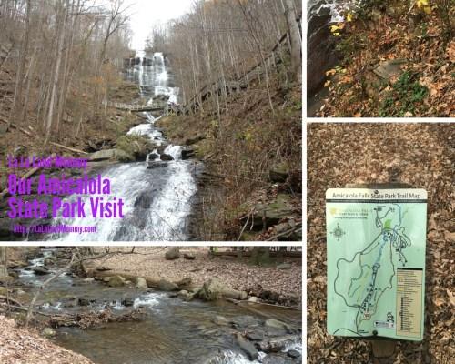 La La Land Mommy: Our Amicalola State Park Visit
