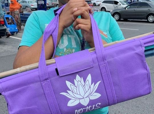 Lotus Trolley Bag Review