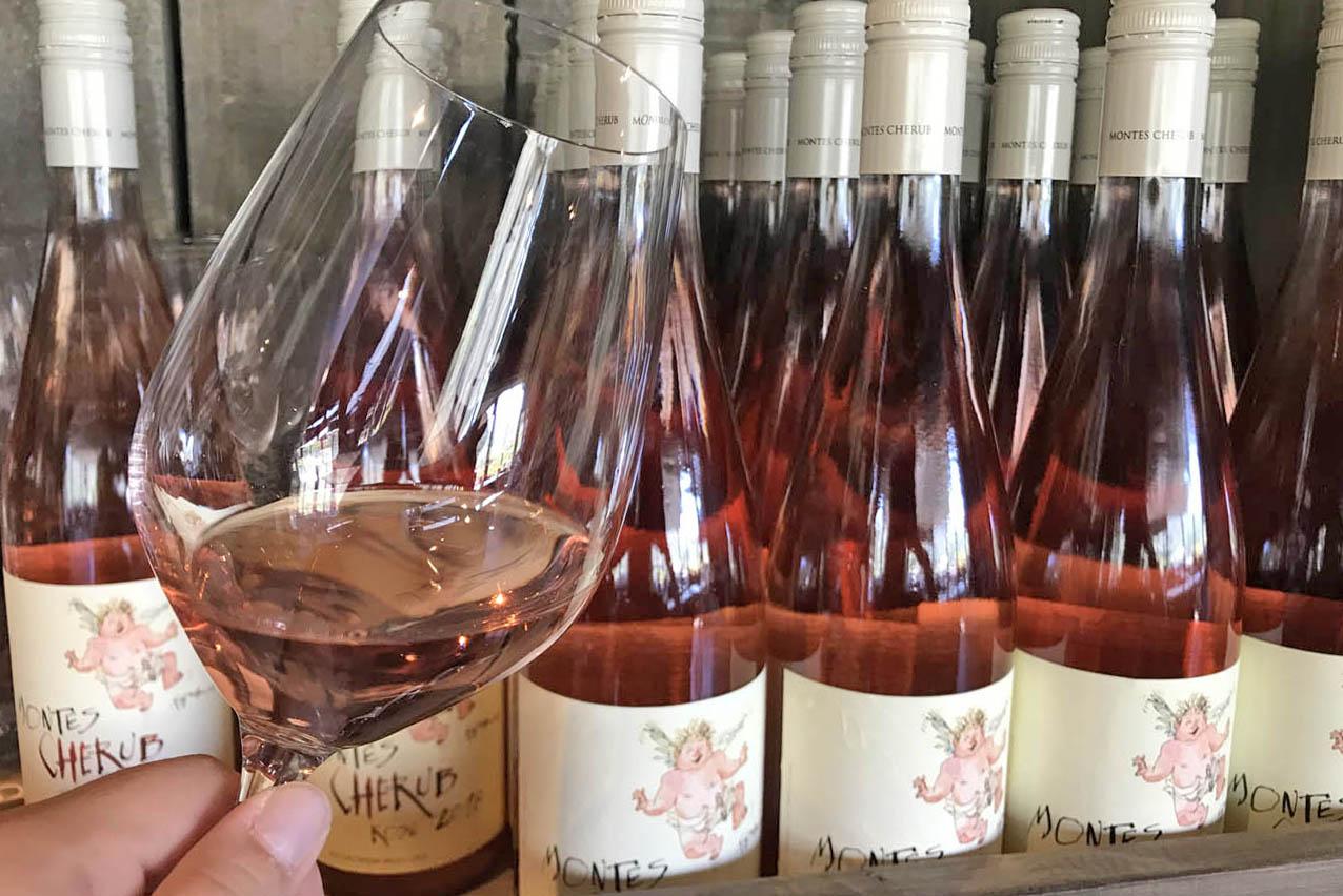 Vale do Colchagua Vinhos Premium