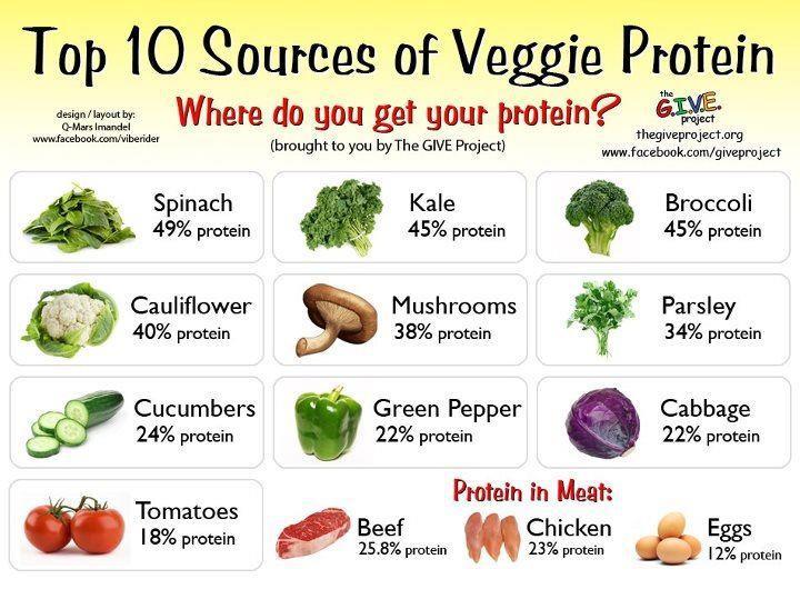 veggie protein chart