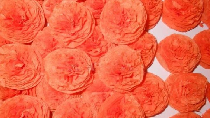 тридцать цветов