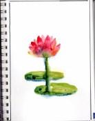 2016-sketchbook029 (626x800)