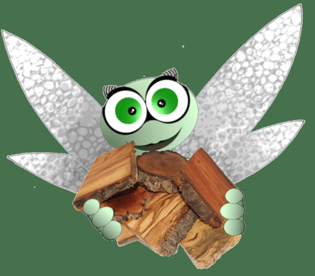 Présentation et vertus des essences de bois
