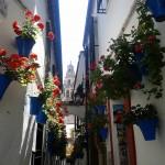 Córdoba, el sur en su esplendor
