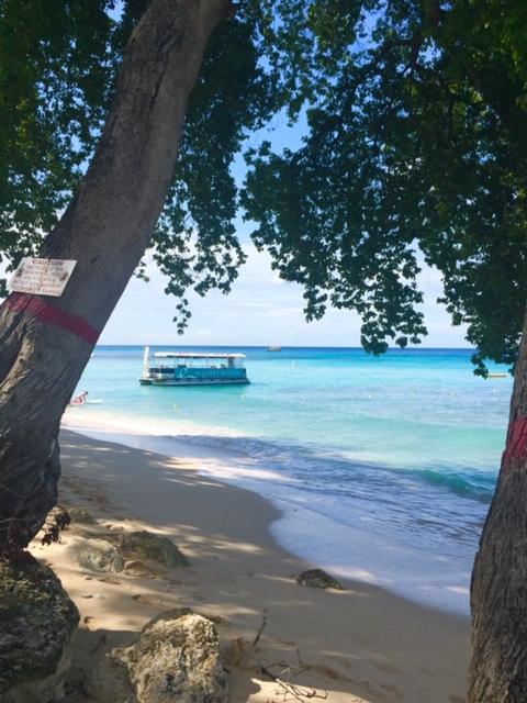 Mon voyage à la Barbade