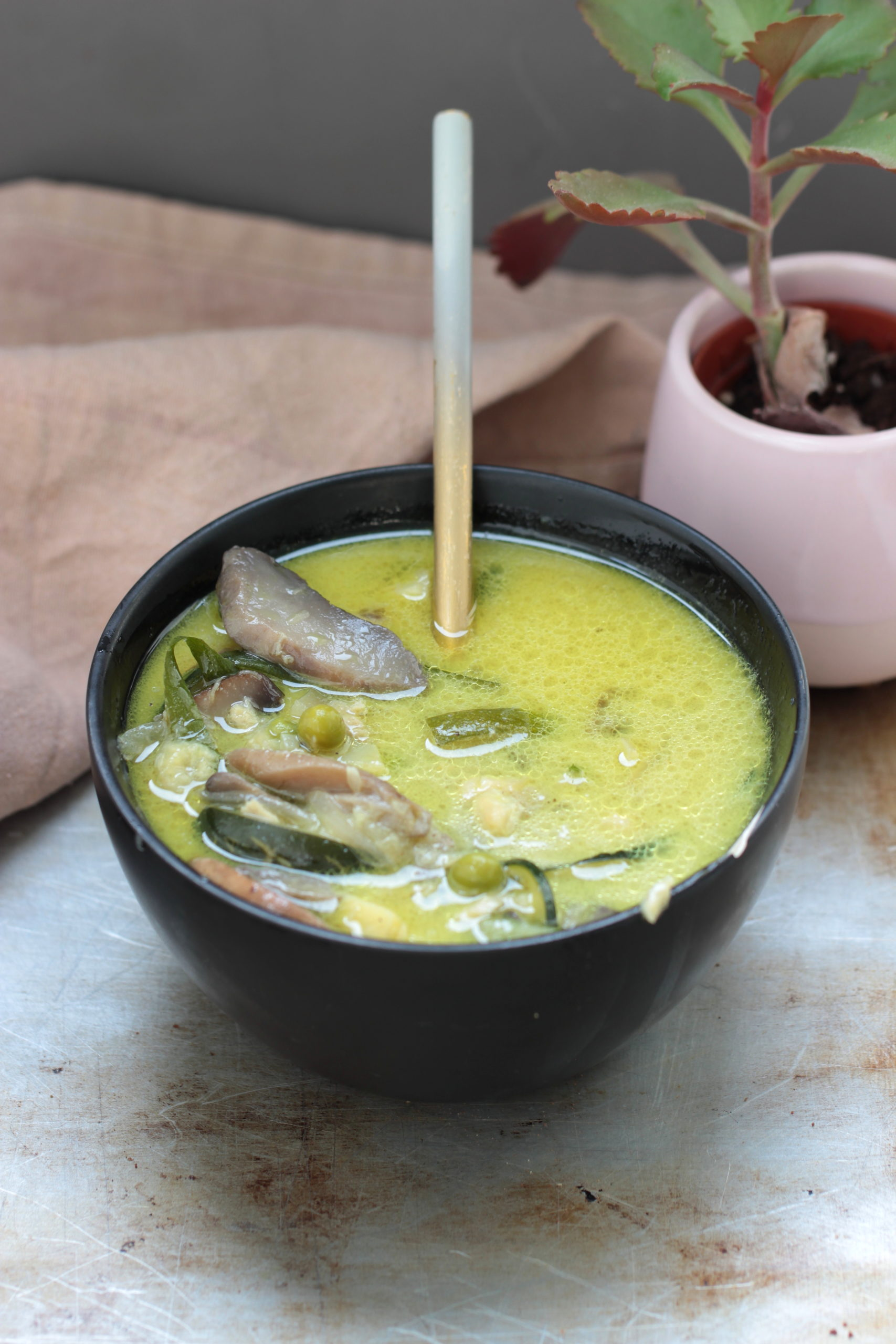 Soupe thailandaise de coco aux légumes