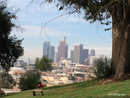 Elysian Park by Alta Lofts