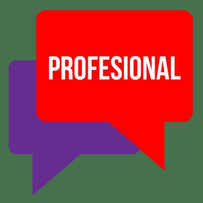 idioma-profesional