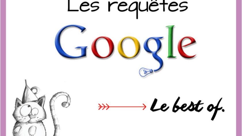 Le meilleur du pire : Requêtes Google #19