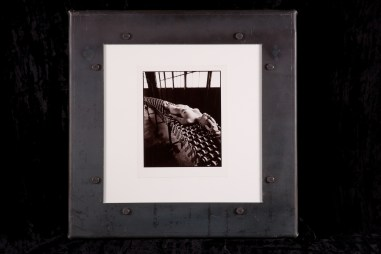 Selenium toned silver gelatin photo print, 8 x 10 in. (in 20 x 20 in. steel frame) $800.00