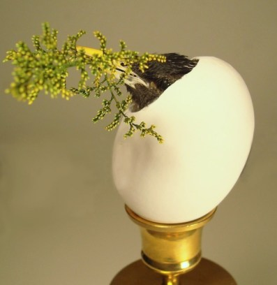 Naturally deceased European starling, assorted plants and flowers, chemically preserved to maintain color and suppleness, chicken egg (content s drained and eaten), vintage stand , latex caulk, excelsior, and paint, 6 x 2 x 2 in. $75.00